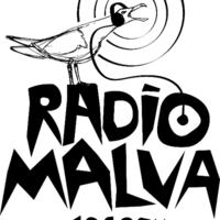 Radio Malva 104.9 fm