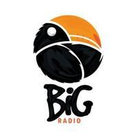 Big Radio 4 Domaćica